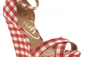 red-gingham-wedges