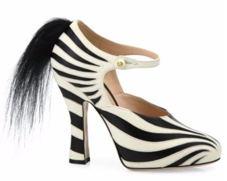 Gucci Zebra print shoes